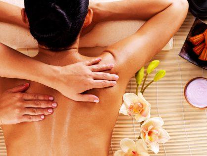 Дистанционный курс «Ломи-Ломи. Гавайский массаж»